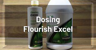 flourish-excel-dosing
