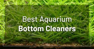 best-aquarium-bottom-cleaners
