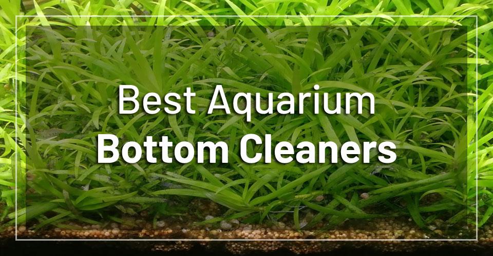 best-aquarium-bottom-cleaners