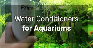 best-dechlorinators-water-conditioners
