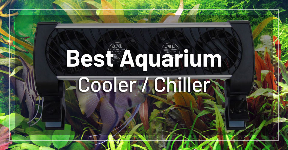 best-aquarium-cooler-chiller