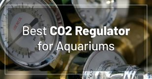 best-aquarium-co2-regulators