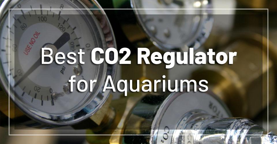 best-aquarium-co2-regulators