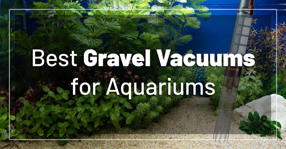 best-aquarium-gravel-vacuums